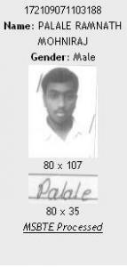 Ramnath_Palale