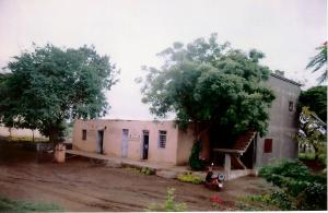 005 Front yard in 1998